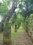 ruines San Ignacio
