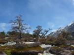 Paysages au pied du Mont Fitz Roy