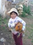 Bolivienne a poule