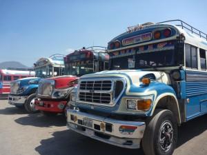 Bus qui roulent comme des fous