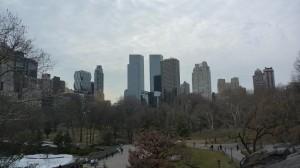 Vue de la ville depuis Central Park
