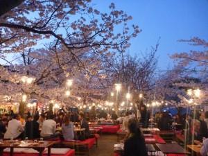 Parc de Kyoto