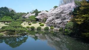 Un des nombreux jardins de tokyo