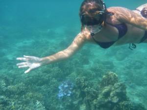 Domi se lache presque sous l'eau