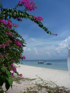Ile de Kapas, plage principale