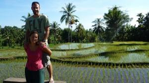 Rizieres de la cote nord de Lombok