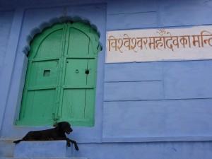 Activite de rue a Jodhpur