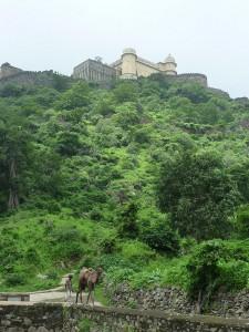 Promenade au pied de la forteresse