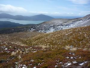 Vue du parc du Tongariro
